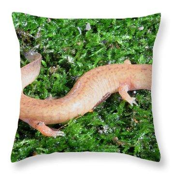 Spring Salamander Throw Pillow