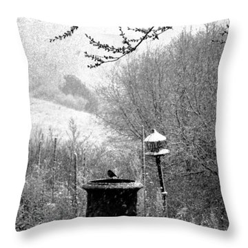 Throw Pillow featuring the photograph Spring Snowstorm 2012 by Susanne Still