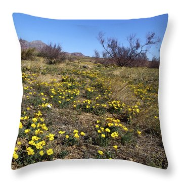 Spring Surprise Franklin Mountains Throw Pillow by Kurt Van Wagner