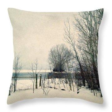 Spring Thaw Throw Pillow by Leanna Lomanski