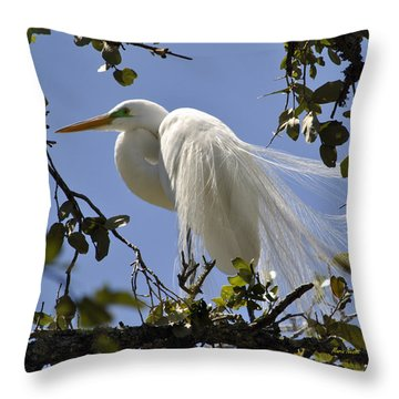 Spring Time Beauty Throw Pillow