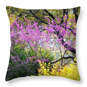 Spring Trees In San Antonio Throw Pillow