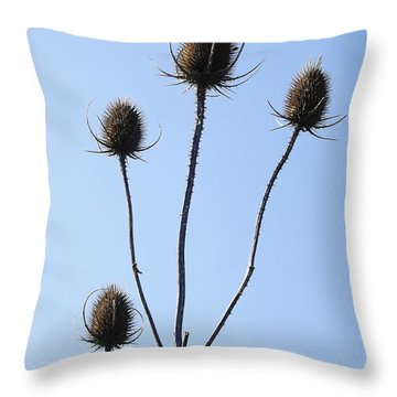 Throw Pillow featuring the photograph Spring Weeds 1 by Gerald Strine