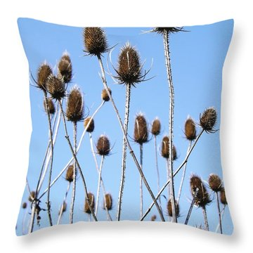 Throw Pillow featuring the photograph Spring Weeds 2 by Gerald Strine