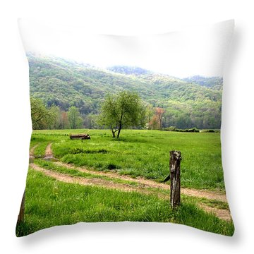 Throw Pillow featuring the photograph Springs Alive by Paul Mashburn