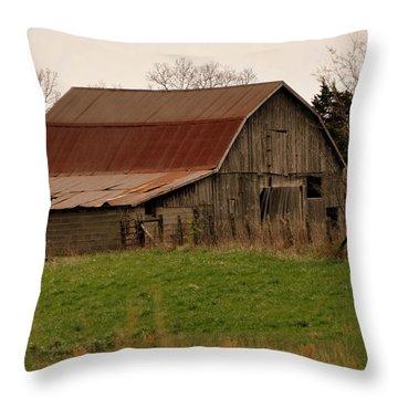 Springtime Barn Throw Pillow by Marty Koch