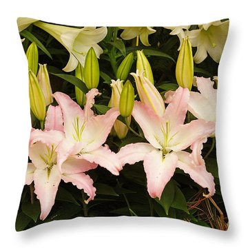 Springtime Blossoms Throw Pillow by J Jaiam