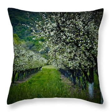 Springtime In The Orchard II Throw Pillow by Bill Gallagher