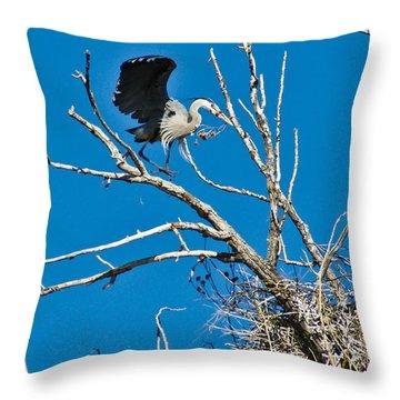 Springtime Nesting In Colorado Throw Pillow