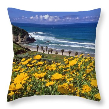 Springtime On The Headlands Throw Pillow