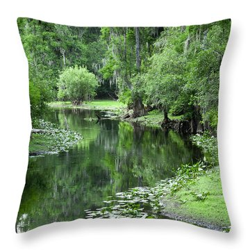 Springtime On The Lake Throw Pillow by Carolyn Marshall