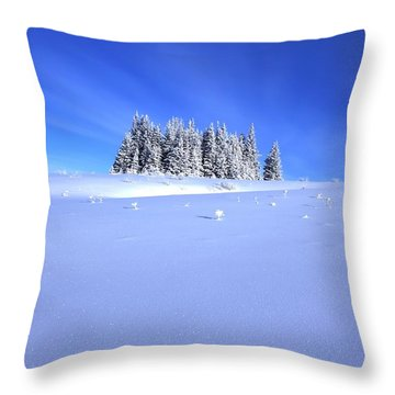 Spruce Grove In Winter Throw Pillow