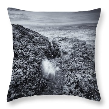 Squeezing Through Every Crack Throw Pillow by Mike  Dawson