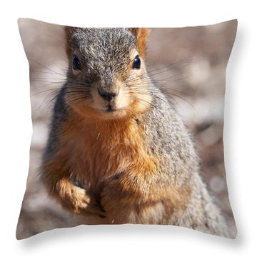 Throw Pillow featuring the photograph Squirrel by Art Whitton