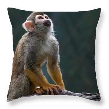 Squirrel Monkey Throw Pillow