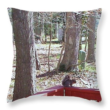 Throw Pillow featuring the photograph Squirrel Waiting by Pamela Hyde Wilson