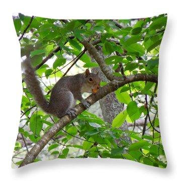 Throw Pillow featuring the photograph Squirrel With Candy by Renee Trenholm