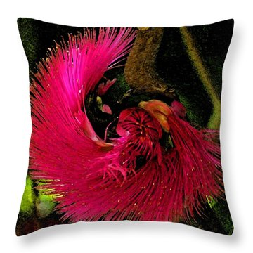 St Kitts Flora Throw Pillow by Cindy Manero