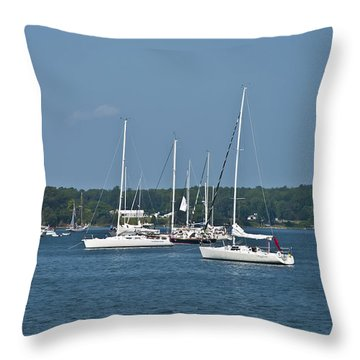 St. Mary's River Throw Pillow by Bill Cannon