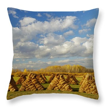 Stacked Hay Bales In Field, Selkirk Throw Pillow by Dave Reede