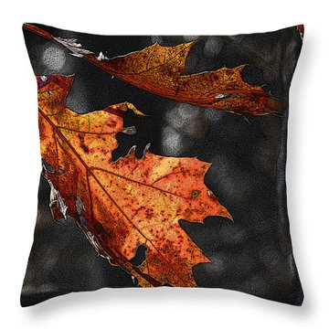 Throw Pillow featuring the photograph Stained Glass In The Forest Cathedral by William Fields