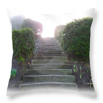 Stairway To A New Beginning Throw Pillow by Brian Wallace