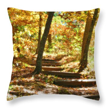 Throw Pillow featuring the photograph Stairway To Heaven by Peggy Franz