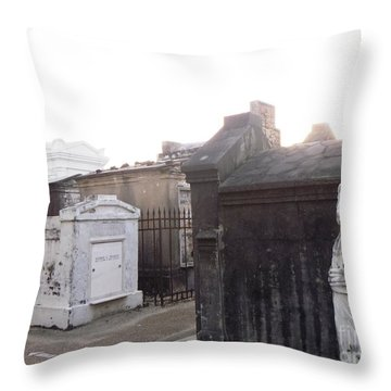 Throw Pillow featuring the photograph Standing Guard by Alys Caviness-Gober