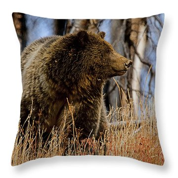 Throw Pillow featuring the photograph Standing In The Grass by J L Woody Wooden