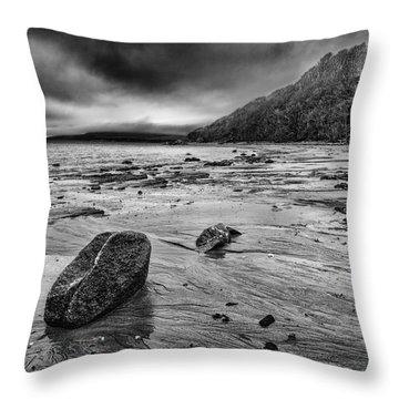Standing Still Throw Pillow by John Farnan