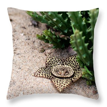 Throw Pillow featuring the photograph Stapelia Variegata by Laura Melis