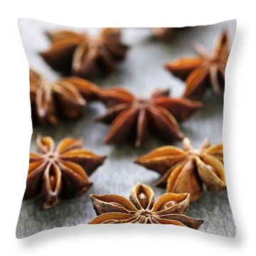 Star Anise Fruit And Seeds Throw Pillow by Elena Elisseeva