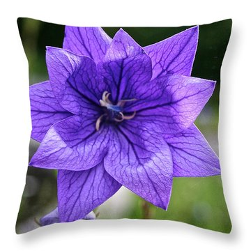 Star Balloon Flower Throw Pillow by Susan Herber