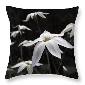 Throw Pillow featuring the photograph Star Flowers by Deborah Smith