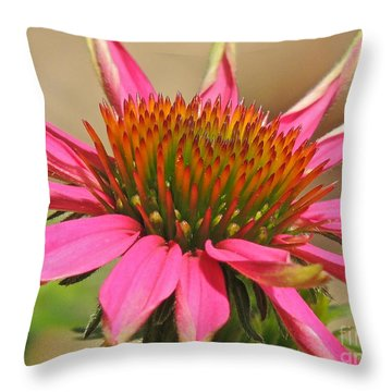 Throw Pillow featuring the photograph Starburst by Eve Spring