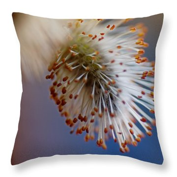 Starburst Throw Pillow by Susan Capuano