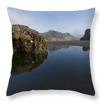 Starfish Beach Throw Pillow by Debra and Dave Vanderlaan