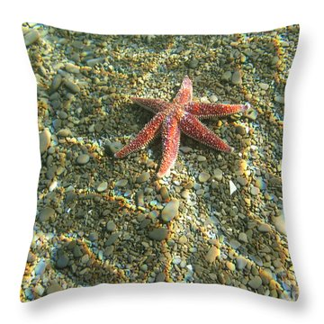 Starfish In Shallow Water Throw Pillow by Ted Kinsman