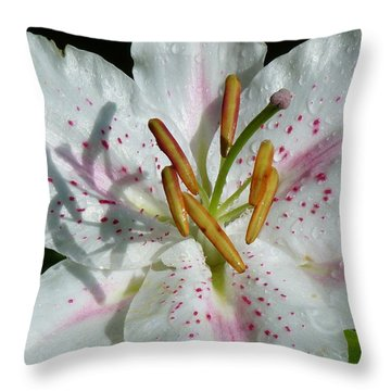 Throw Pillow featuring the photograph Stargazer Lily by Lynn Bolt