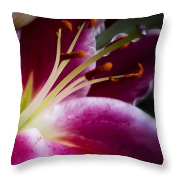 Stargazer Lily Portrait Throw Pillow