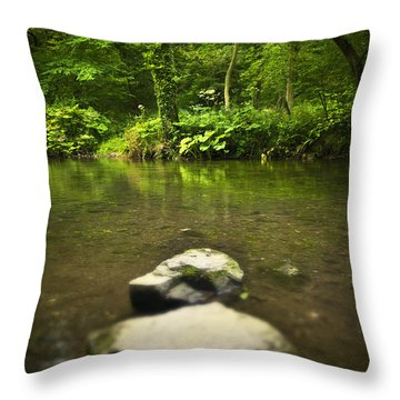 Stepping Stones Throw Pillow by Svetlana Sewell