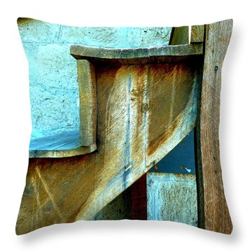 Throw Pillow featuring the photograph Stepping Up To The Blues by Newel Hunter