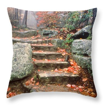 Steps Cloudland Canyon Throw Pillow