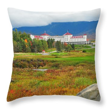 Stickney's Dream  Throw Pillow by Catherine Reusch Daley