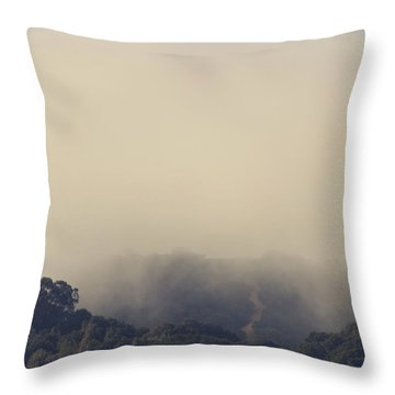 Still Hanging On Throw Pillow by Laurie Search