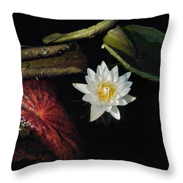 Still Life Throw Pillow by Joseph Yarbrough