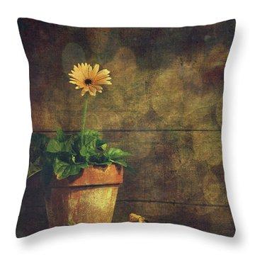 Still Life Of Yellow Gerbera Daisy In Clay Pot Throw Pillow by Sandra Cunningham