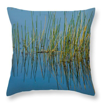 Still Water And Grasses Throw Pillow by Rich Franco