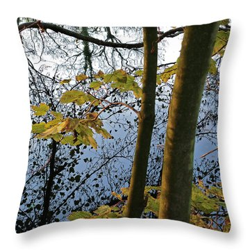 Still Waters In The Fall Throw Pillow