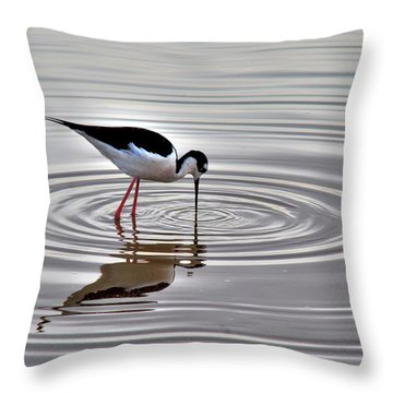 Throw Pillow featuring the photograph Black-necked Stilt by Tam Ryan